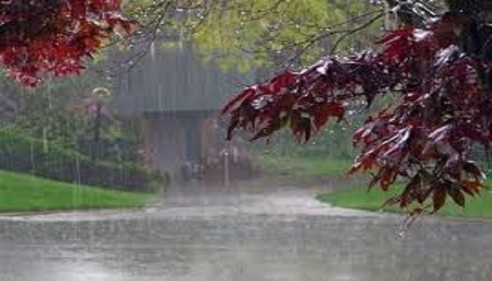 علت بارش های شدید جنوب کشور