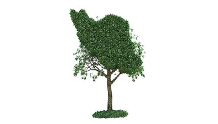توسعه ایران سبز